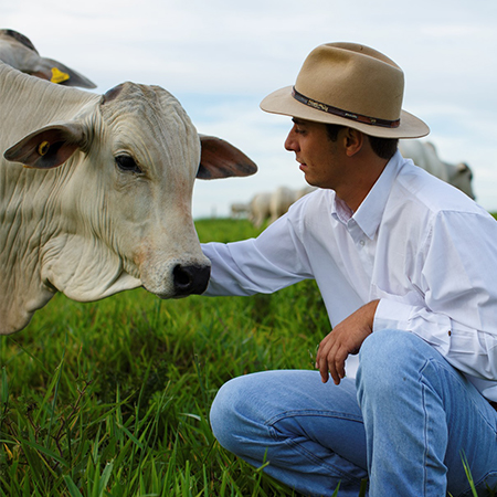 Brazilian farmer with cow
